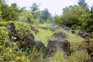 GR5 door Noord-Frankrijk: Natuurpark Haard