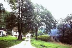 GR5 door de Jura: La Rasse